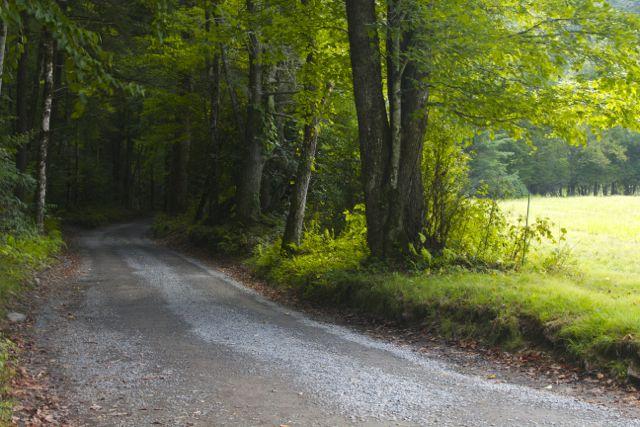 Cataloochee Valley Road