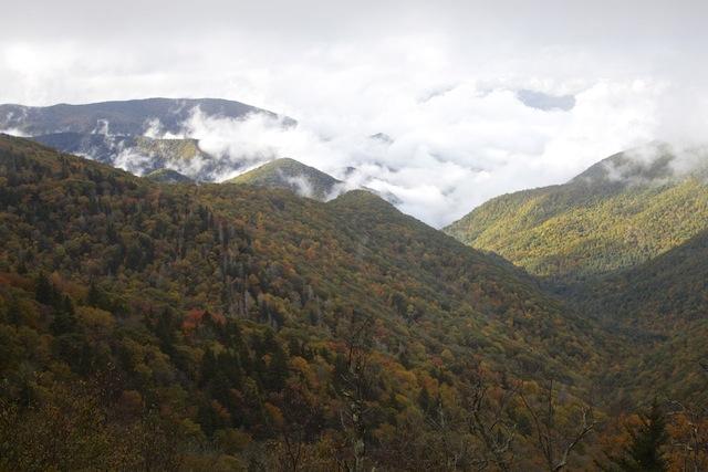 Blue Ridge Parkway Fall Foliage 2