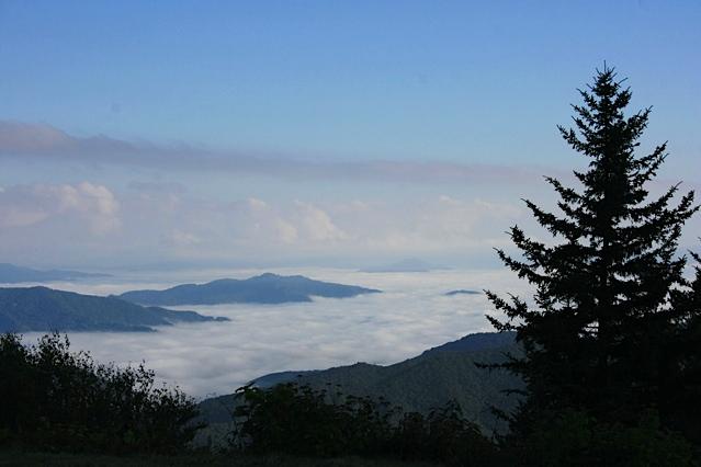 Blue Ridge Parkway Early Morning Mist