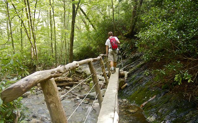Alum Bluff Trail