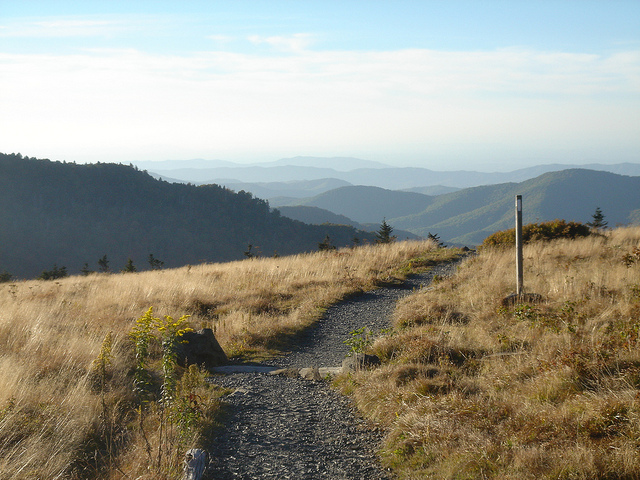 Carver's Gap AT