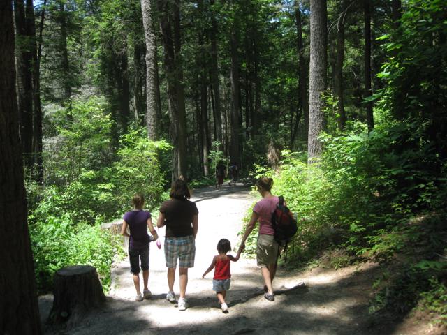 Erwin's Trail Linville Falls