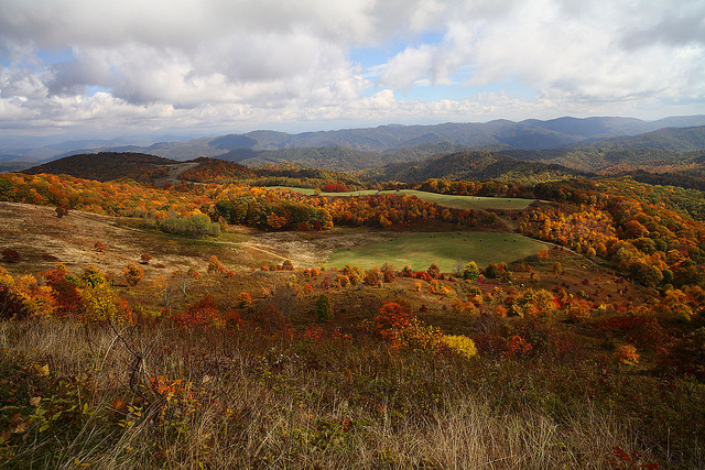 Max Patch Fall View