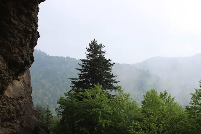 Alum Cave View