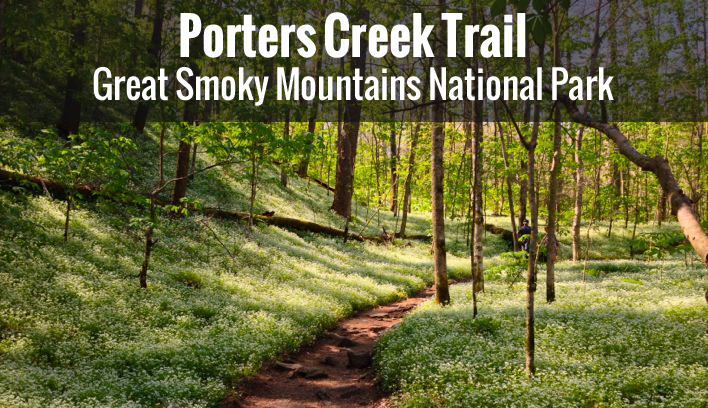 Porters Creek Trail Cover