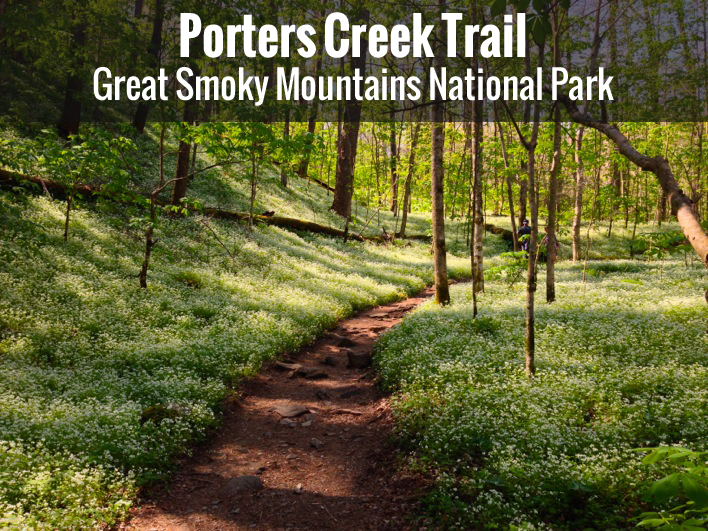 Porters Creek Trail