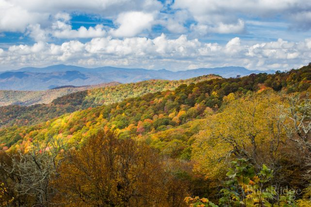 Blue Ridge Parkway Fall Color