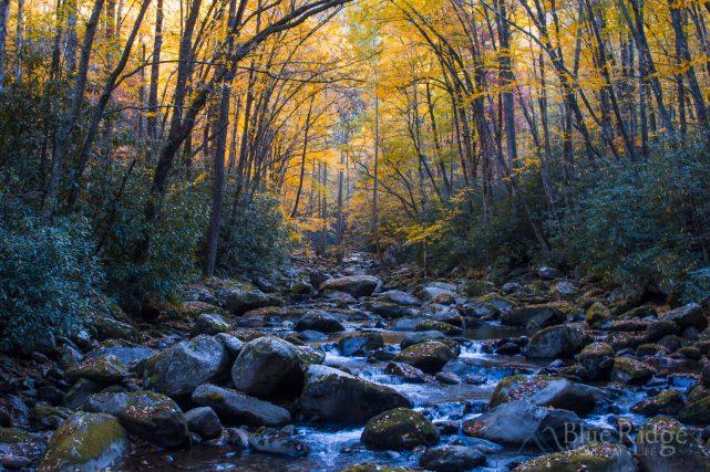 Big Creek Fall Color