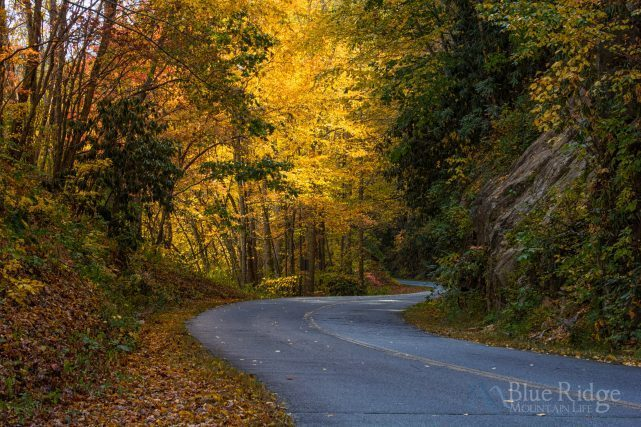 Fall Color Blue Ridge Parkway