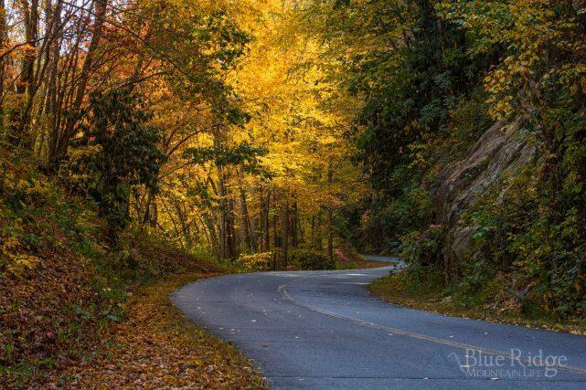 Fall Color Blue Ridge Parkway