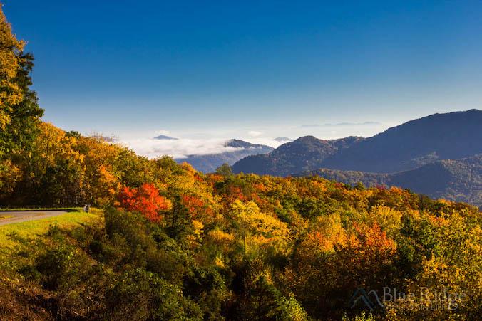Fall Foliage 2017 Forecast And Guide
