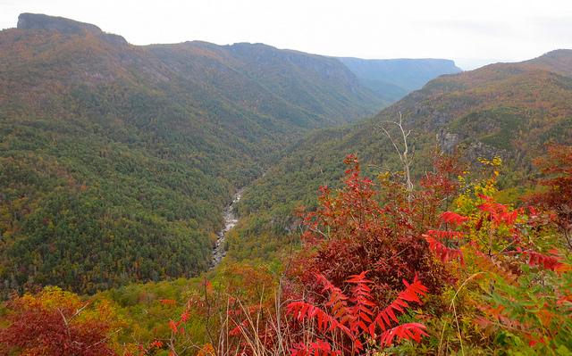 Fall at Wiseman's View