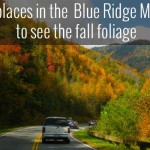 25 Best Places to See Fall Foliage in the Blue Ridge