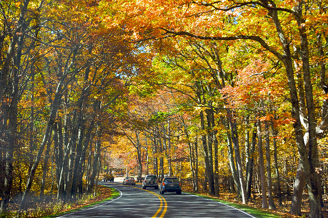 25 Best Places In The Blue Ridge For Fall Foliage