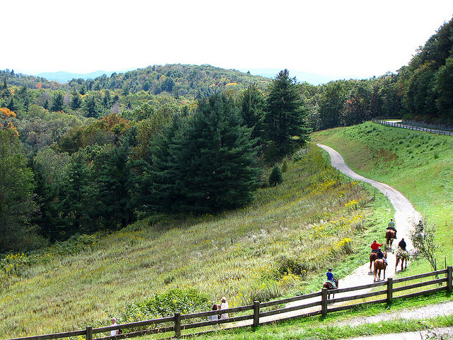 Fall Horseback Riding in the Blue Ridge Mountains