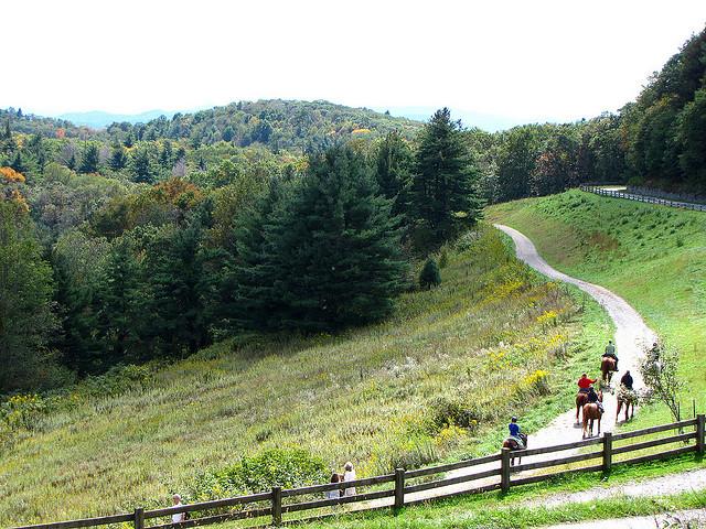 Fall Horseback Riding in the Blue Ridge Mountains