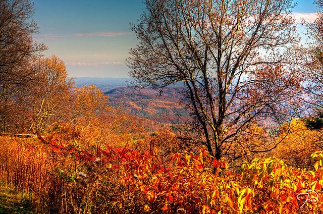 Fall near Boone NC