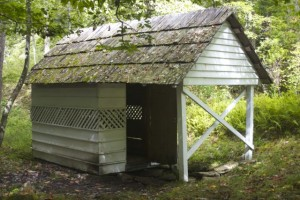 Woody Spring House