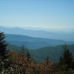 Andrews Bald Trail