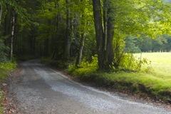 Cove Creek Road Cataloochee