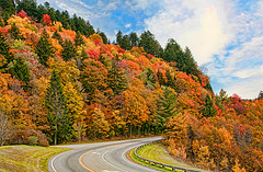 Great Smoky Mountains National Park Guide Blue Ridge