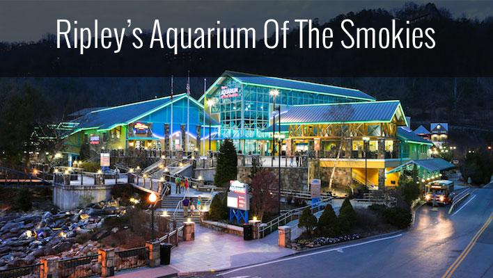 Ripley 39 S Aquarium Gatlinburg Tn Blue Ridge Mountain Life