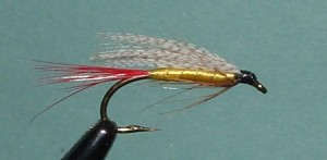 fly-fishing-streamer