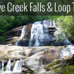 Cove Creek Loop Trail