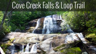 Cove Creek Loop Trail