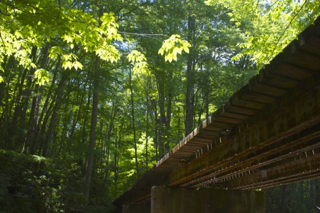 little-river-railroad-bridge2