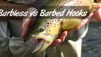 Barbless hooks vs. Barbed hooks – A Comparative Analysis