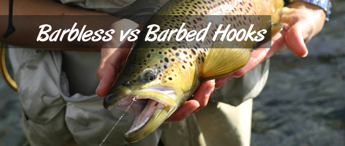 Barbless Hooks Featured