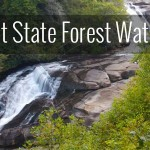Dupont State Forest – Waterfalls Trail