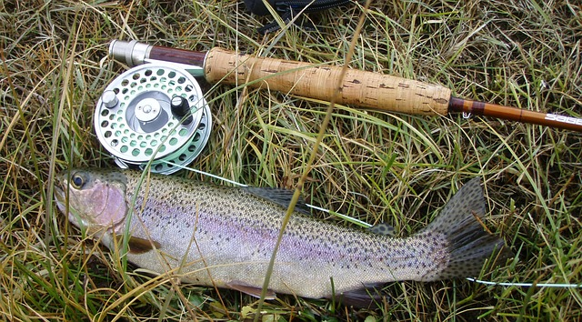 Fly Fishing Leader and Tippet Set-up