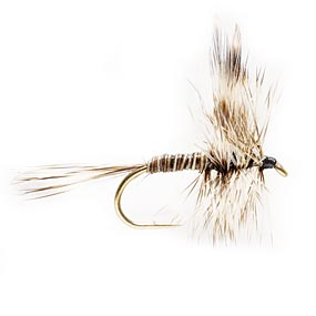 Mosquito Dry Fly
