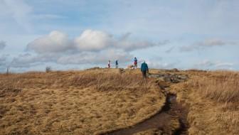 Black Balsam Knob Hiking