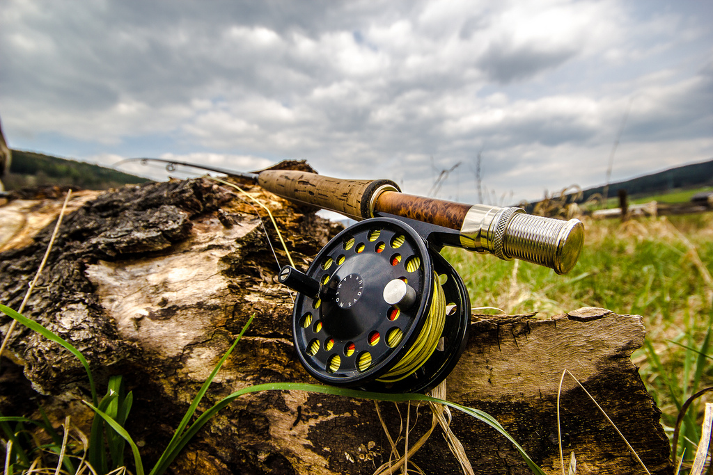 Fly Fishing Line - The Basics