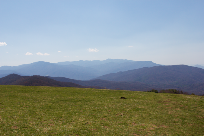 Mount LeConte from Max Patch