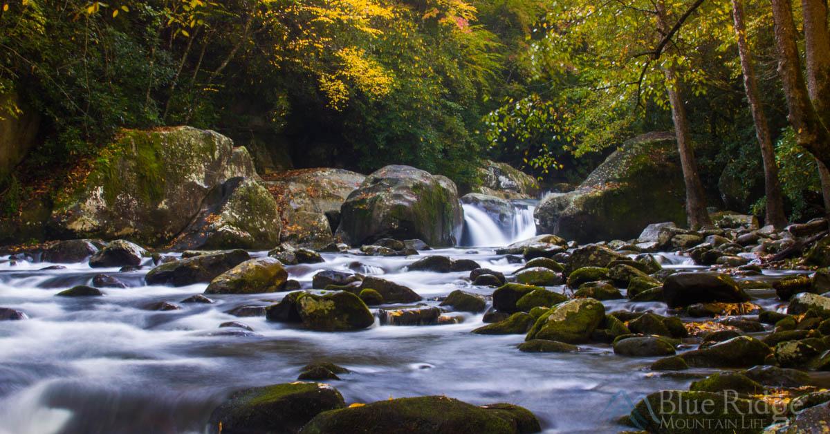 Big Creek Great Smoky Mountains National Park Blue Ridge