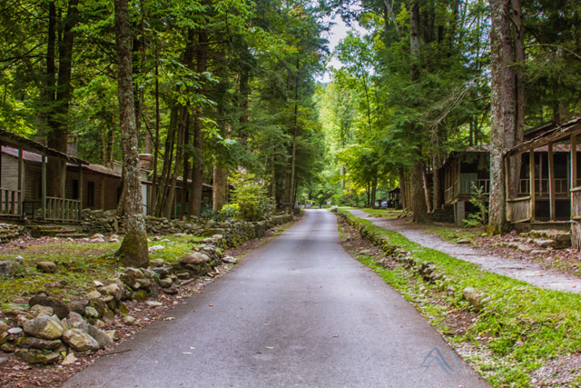 Elkmont Daisy Town
