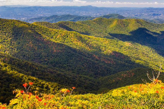 Craggy Pinnacle Trail Summit