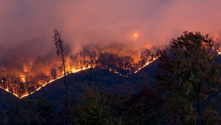 Forest Fires in Western NC November 2016