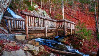 Juney Whank Falls Deep Creek