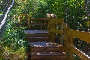 Wooden Stairs Graveyard Fields