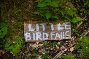 Little Bird Falls Sign