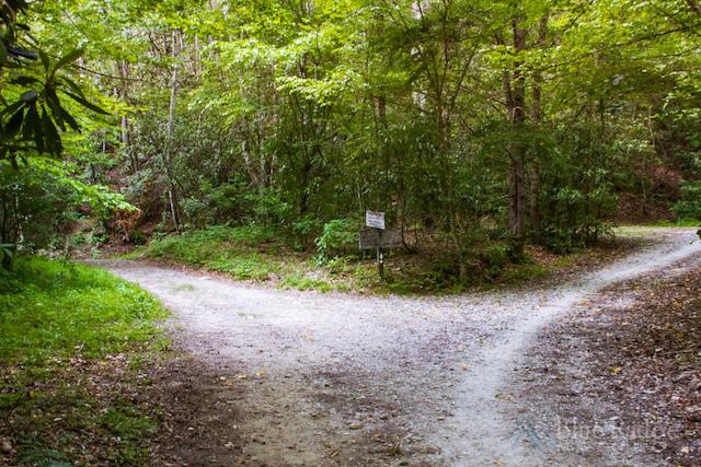 Bradley Fork Trail
