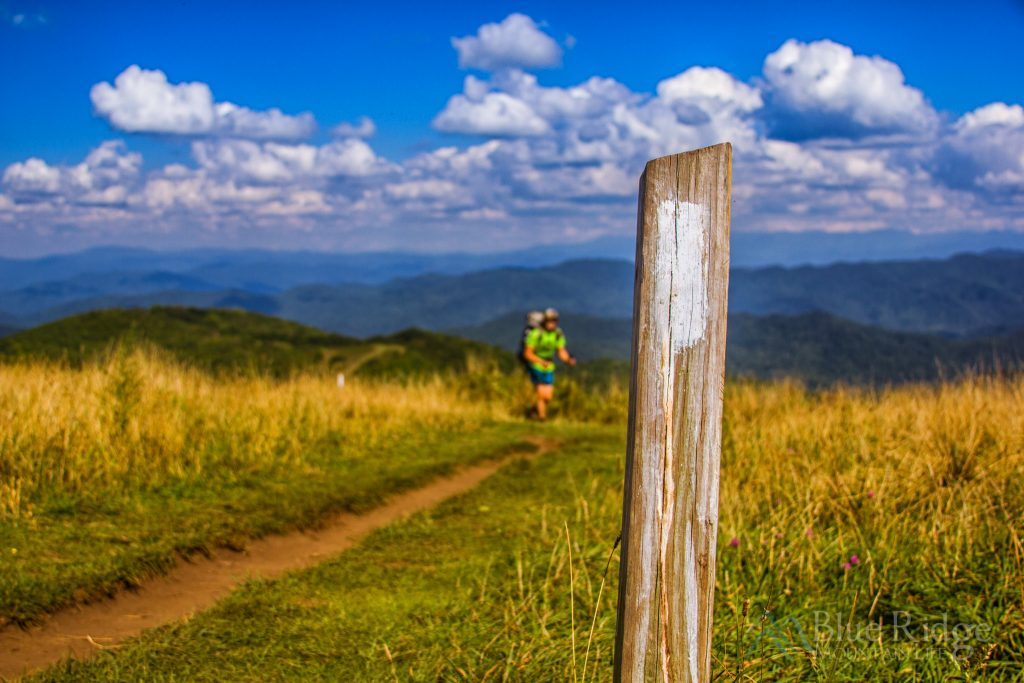 Pisgah National Forest Hiking