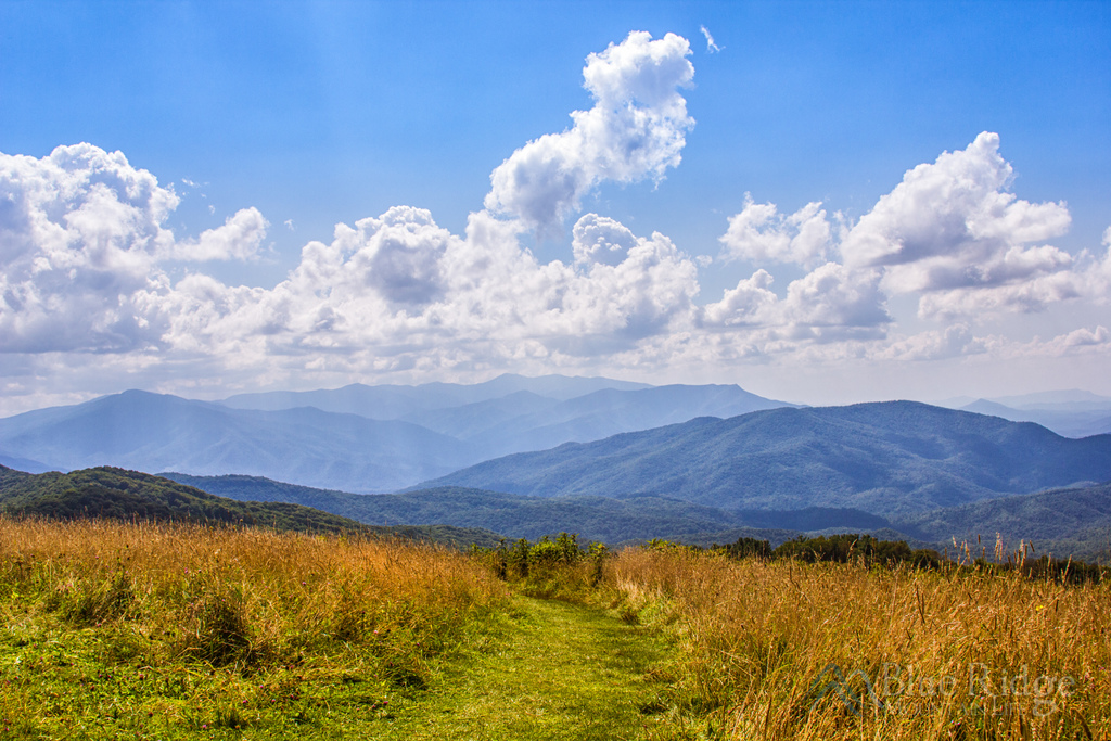 Max Patch - Appalachian Ranger District