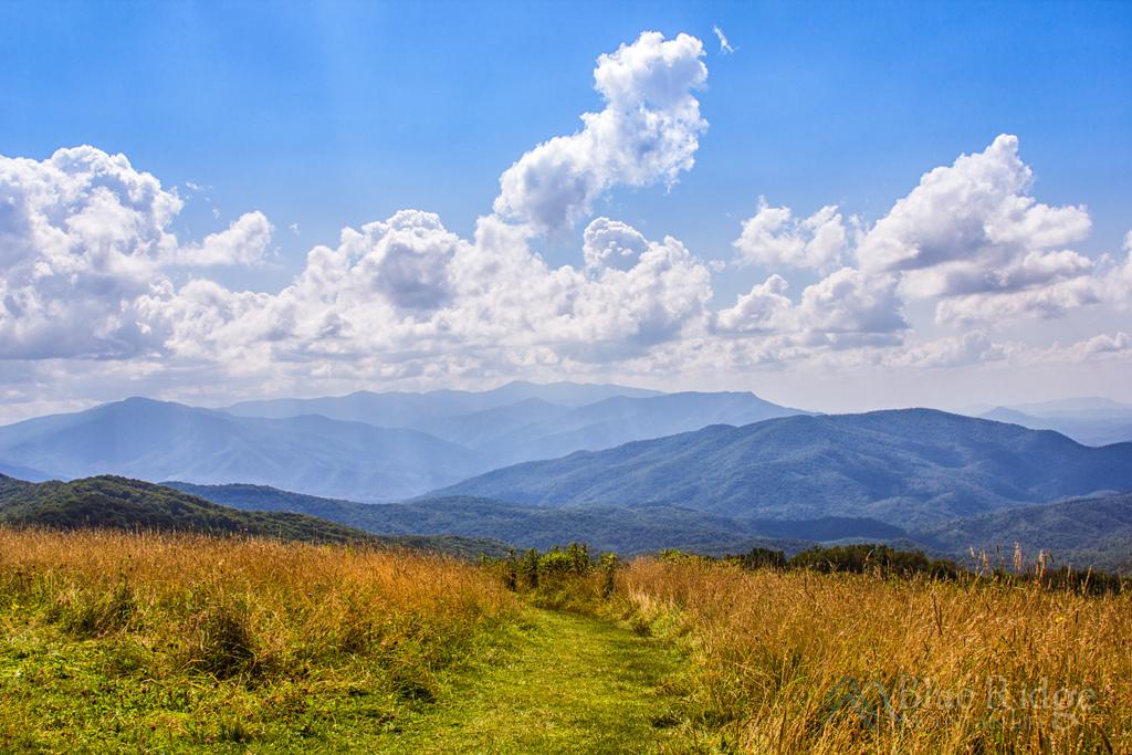 Max Patch - Appalachian Ranger District