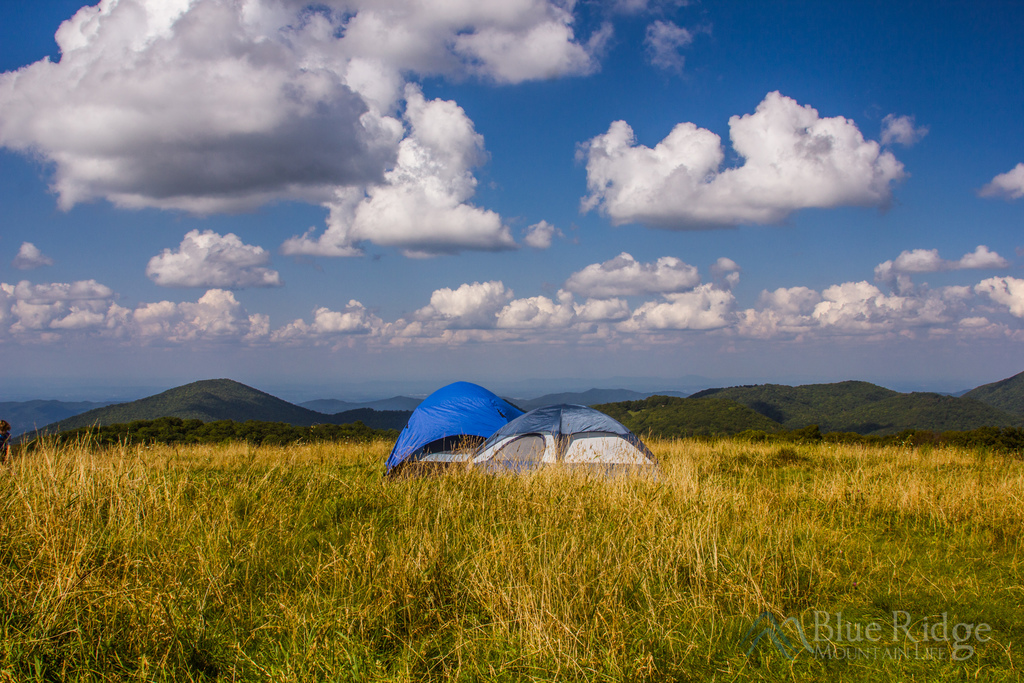 Pisgah National Forest Camping